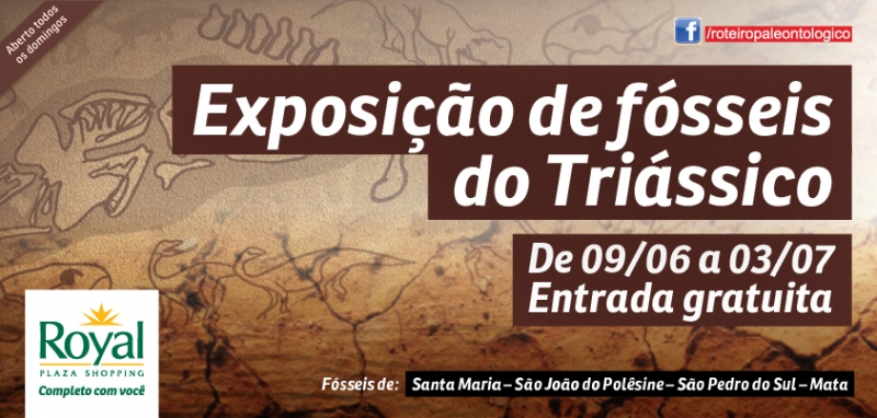 Exposição de Fósseis do Triássico FAZ PARTE DA CAMPANHA